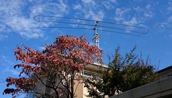 紅葉とアンテナ2_scr.JPG
